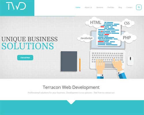 Terracon Web Development